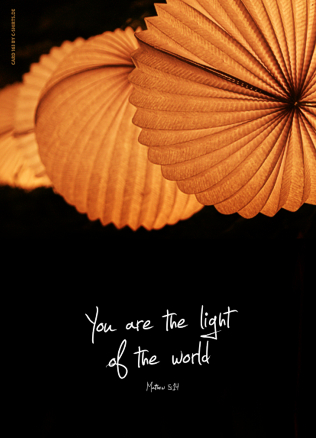 163 You are the light...